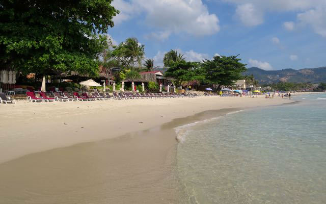 playa chawen poppies samui