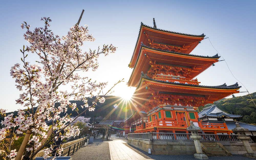 Dónde alojarse en Kioto
