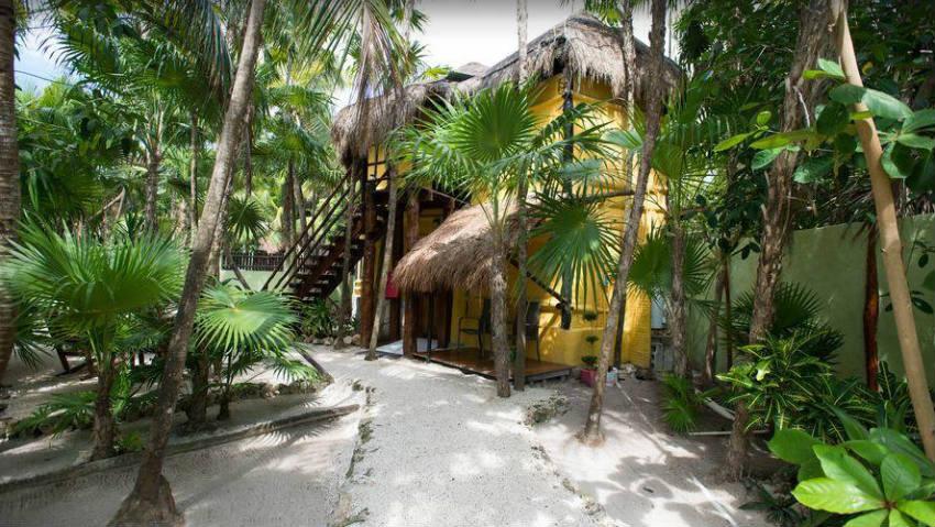 Las Palmas Maya