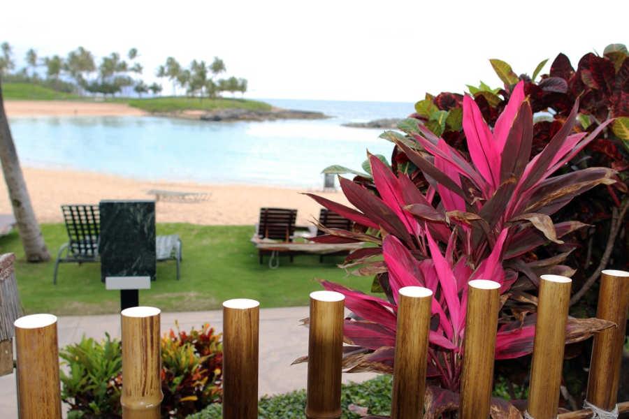 Kapolei – Oahu